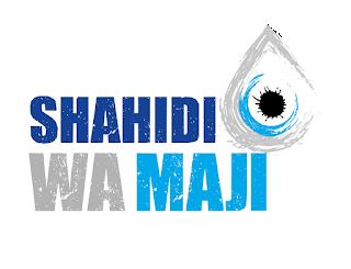 Nafasi za kazi Shahidi wa Maji-Finance and Administrative Officer (FAO)