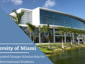 University of Miami Stamps Undergraduate Scholarship 2021 in USA – Fully Funded