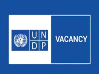 Nafasi za kazi United Nations (UN) at UNDP Tanzania - National Consultant