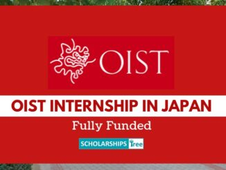 OIST Internship Program 2021 in Japan For International Students – Fully Funded