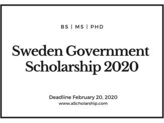 Sweden Government Scholarship 2021-2022 – Swedish Institute Scholarships for Global Professionals (SISGP)