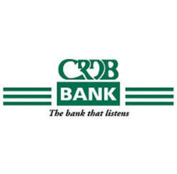 Job Opportunity at CRDB- Senior Manager; Networks