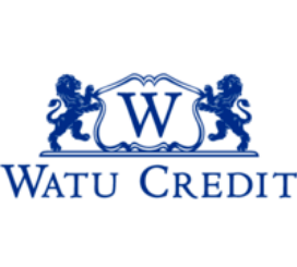 Job Opportunity Arusha at WATU Credit Africa-Branch Manager
