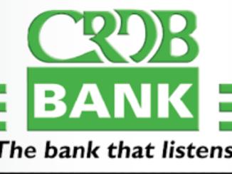 Job Opportunity at CRDB Bank-Relationship Manager SME April 2021