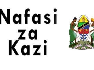 Nafasi za kazi Halmashauri ya wilaya Namtumbo -Watendaji Vijiji