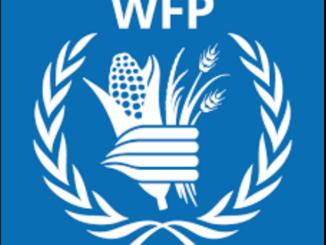 Internship Opportunity UN at WFP Tanzania Intern - IT Operation Support